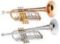 Trompettes sib