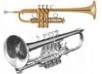 Trompettes mib