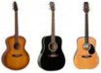 Guitares acoustiques / folks