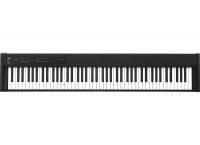 PIANO NUMERIQUE DE SCENE KORG D1
