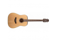 GUITARE ACOUSTIQUE TAKAMINE GD20-NS